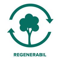 sindrila din lemn de acoperis din resurse regenerabile
