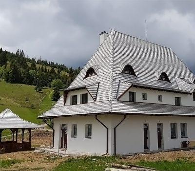 acoperis sindrila lemn cedru galben patina gri argintie georoof